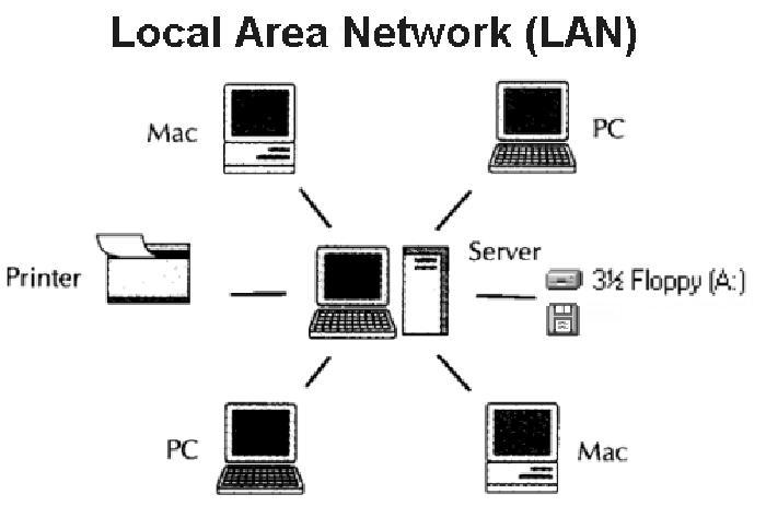 mang LAN la gi