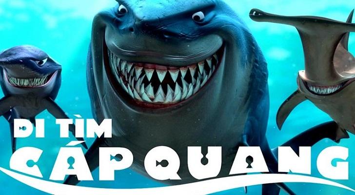 Cá mập - loài sinh vật biển bị nghi ngờ nhiều nhất mỗi khi sự cố đứt cáp quang biển xảy ra